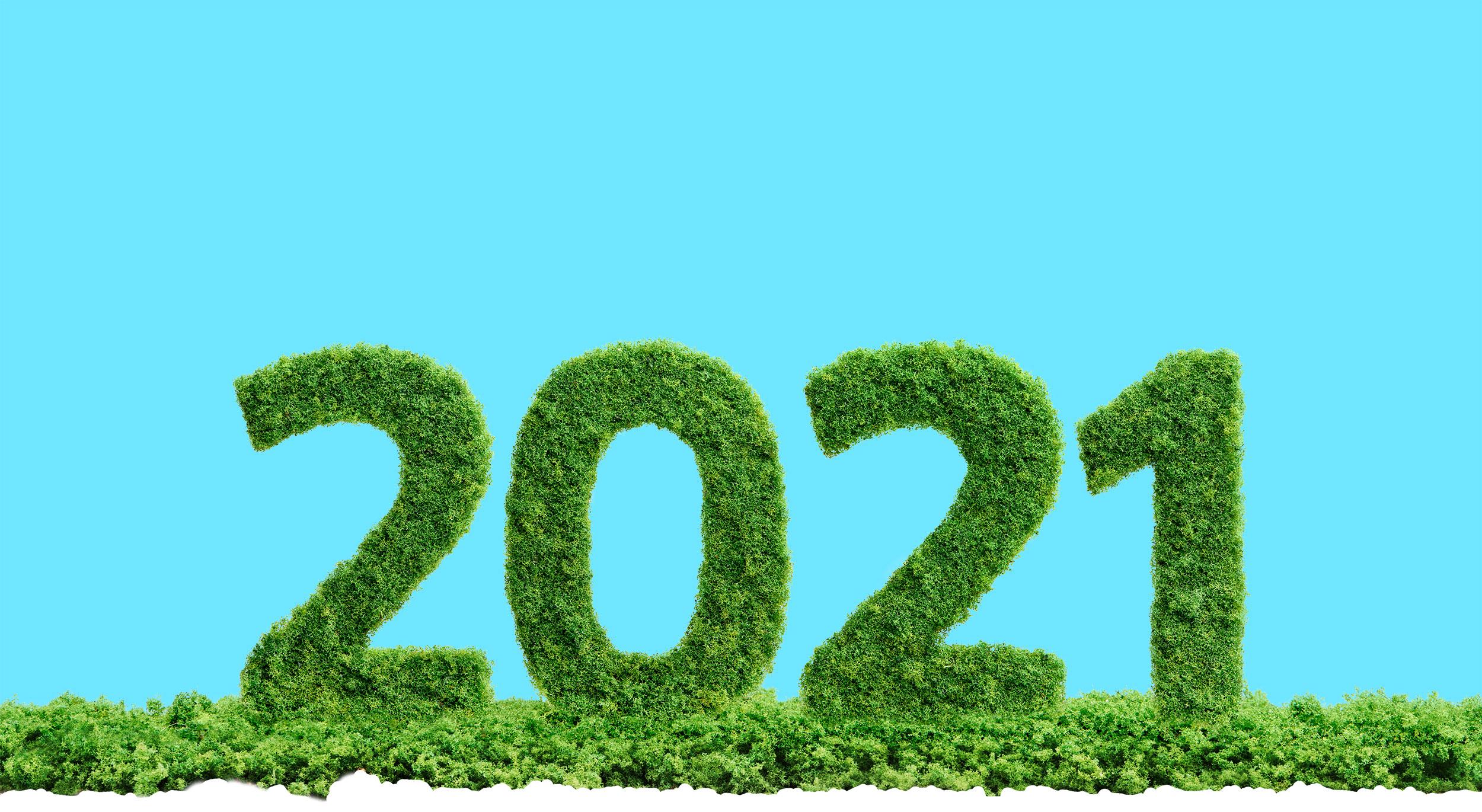 Resultaten en impact StartGreen en haar fondsen in 2020
