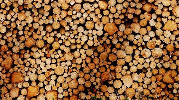 Hoe groen is energie uit biomassa?